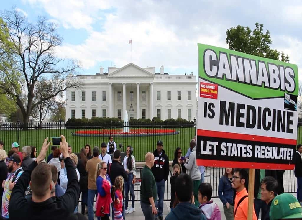 Cannabis Activism - White House